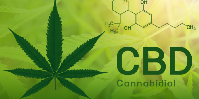 A Primer About Cannabidiol and the Benefits of CBD - All Greens Clinic